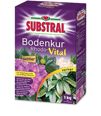 https://www.oleandershop24.de/media/images/scotts-medium/substral-bodenkur-rhodo-vital-1kg.jpg