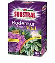 SCOTTS Substral® Bodenkur Rhodo-Vital, 1 kg